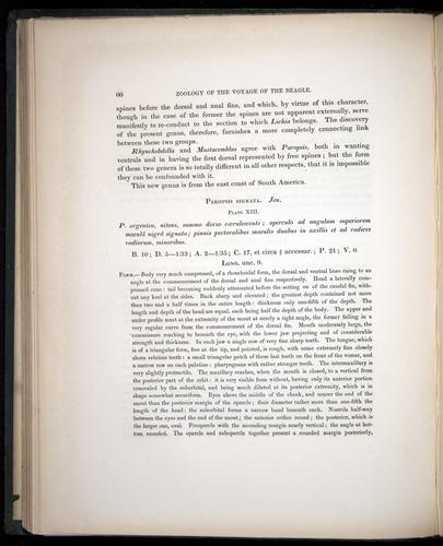 Image of Darwin-F8.3-1838-00066