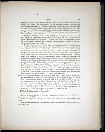 Image of Darwin-F8.3-1838-00067