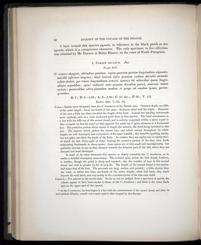 Image of Darwin-F8.3-1838-00068