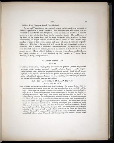 Image of Darwin-F8.3-1838-00069