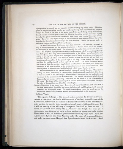 Image of Darwin-F8.3-1838-00070