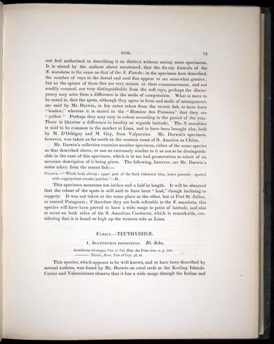 Image of Darwin-F8.3-1838-00075