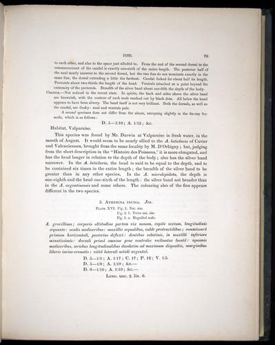 Image of Darwin-F8.3-1838-00079
