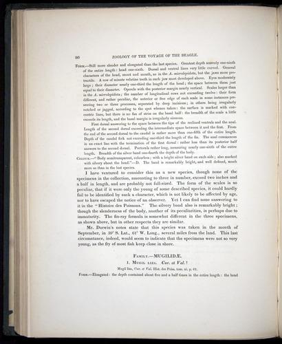 Image of Darwin-F8.3-1838-00080