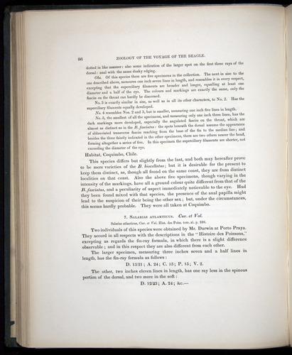 Image of Darwin-F8.3-1838-00086