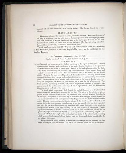 Image of Darwin-F8.3-1838-00088