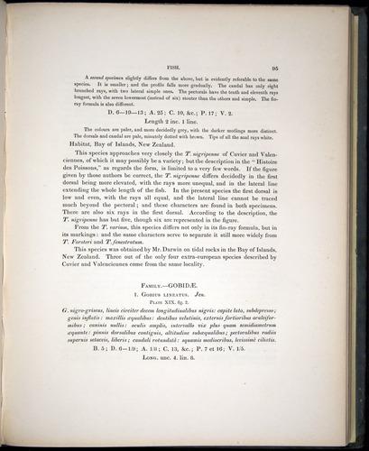 Image of Darwin-F8.3-1838-00095