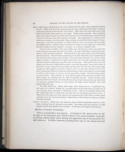 Image of Darwin-F8.3-1838-00096