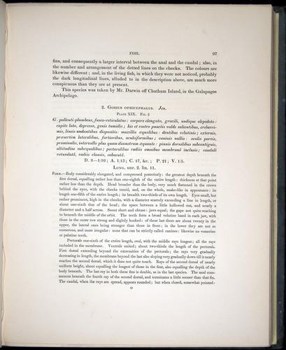 Image of Darwin-F8.3-1838-00097