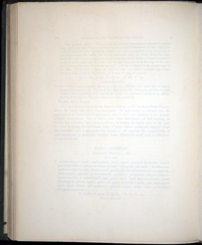 Image of Darwin-F8.3-1838-00100-bf20