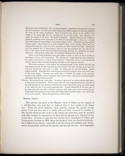 Image of Darwin-F8.3-1838-00103