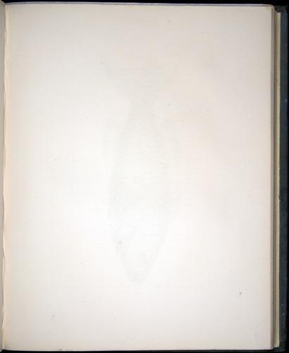 Image of Darwin-F8.3-1838-00104-af21