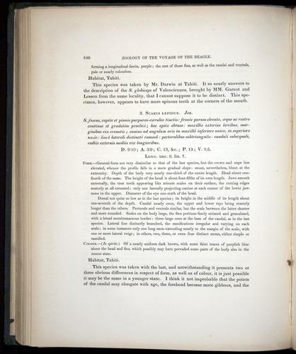 Image of Darwin-F8.3-1838-00108