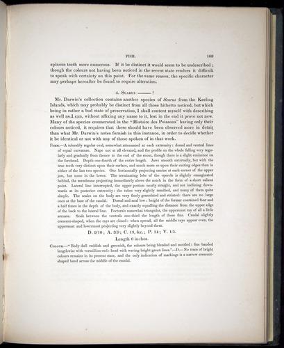 Image of Darwin-F8.3-1838-00109
