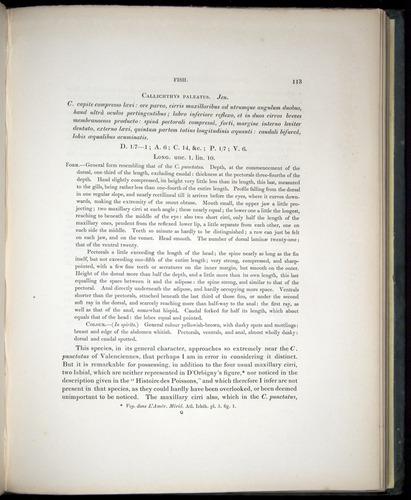 Image of Darwin-F8.3-1838-00113