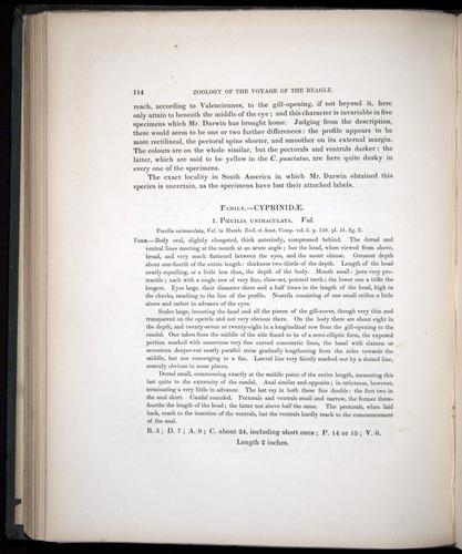 Image of Darwin-F8.3-1838-00114