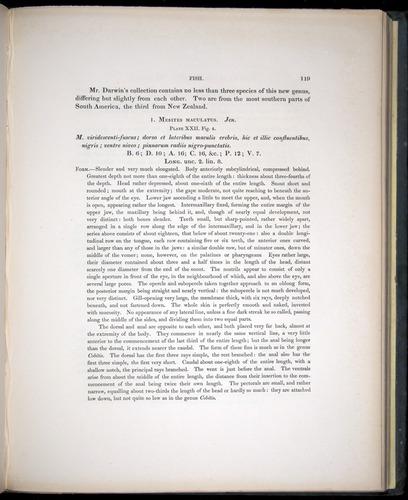 Image of Darwin-F8.3-1838-00119