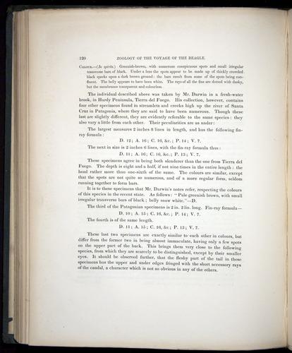 Image of Darwin-F8.3-1838-00120