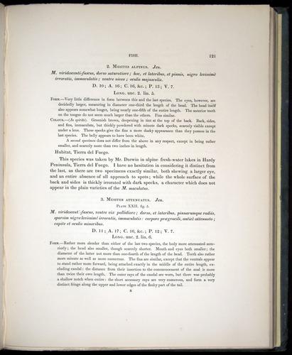Image of Darwin-F8.3-1838-00121