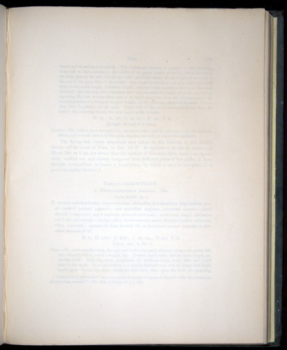 Image of Darwin-F8.3-1838-00122-yf23