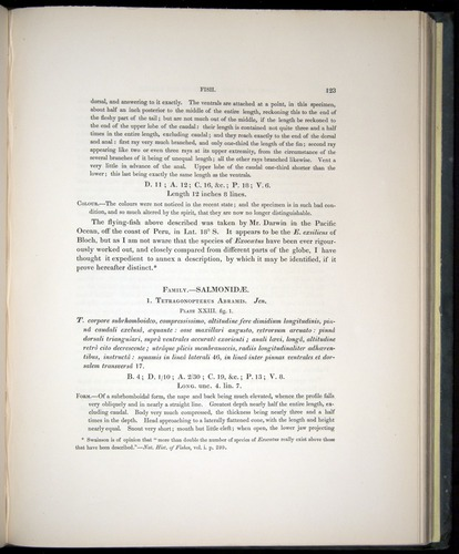 Image of Darwin-F8.3-1838-00123