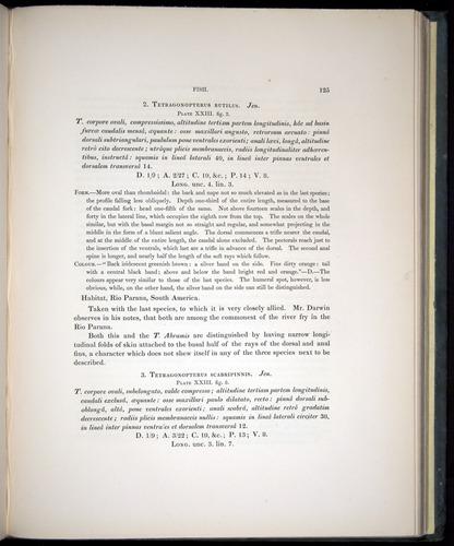 Image of Darwin-F8.3-1838-00125