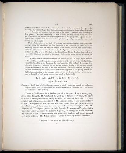 Image of Darwin-F8.3-1838-00129
