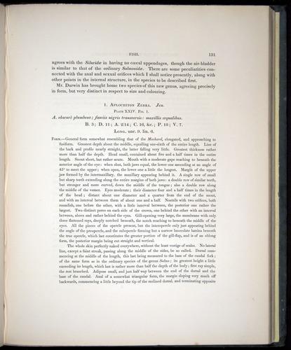 Image of Darwin-F8.3-1838-00131
