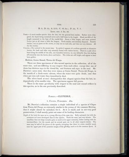 Image of Darwin-F8.3-1838-00133