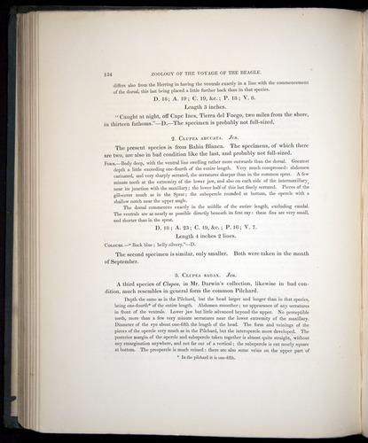 Image of Darwin-F8.3-1838-00134