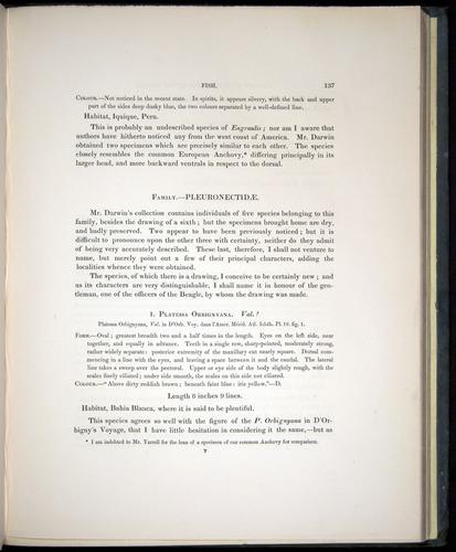 Image of Darwin-F8.3-1838-00137