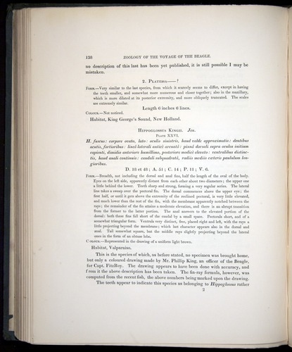 Image of Darwin-F8.3-1838-00138