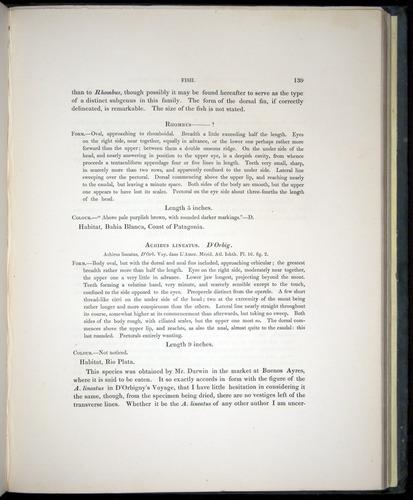 Image of Darwin-F8.3-1838-00139