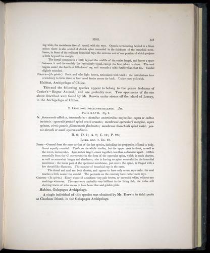 Image of Darwin-F8.3-1838-00141