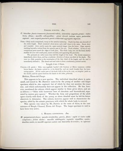 Image of Darwin-F8.3-1838-00143