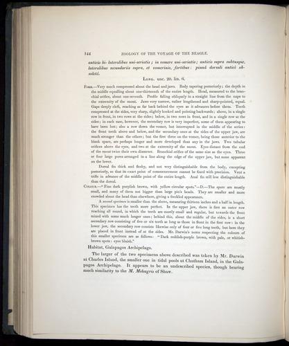 Image of Darwin-F8.3-1838-00144