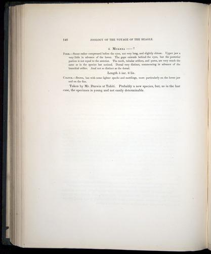 Image of Darwin-F8.3-1838-00146