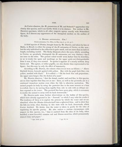 Image of Darwin-F8.3-1838-00151