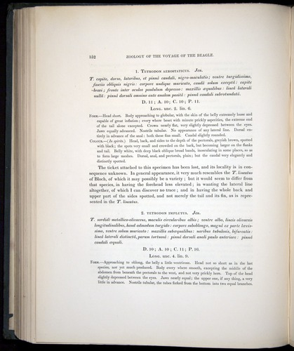 Image of Darwin-F8.3-1838-00152