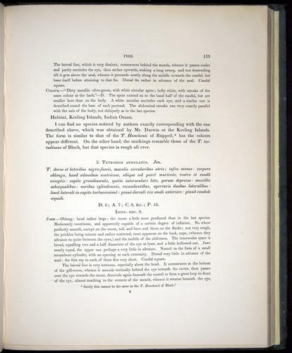 Image of Darwin-F8.3-1838-00153