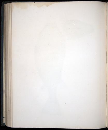 Image of Darwin-F8.3-1838-00154-zf28