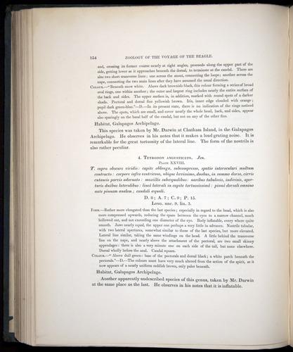 Image of Darwin-F8.3-1838-00154