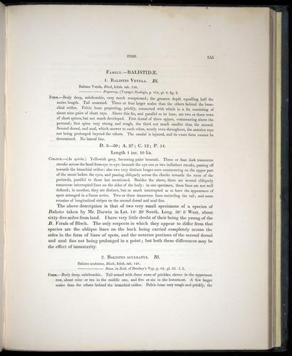 Image of Darwin-F8.3-1838-00155