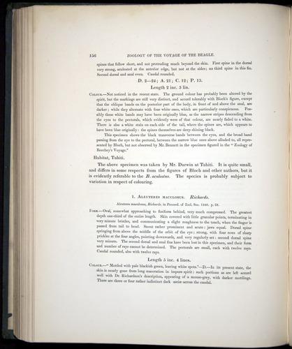 Image of Darwin-F8.3-1838-00156