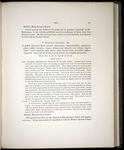 Image of Darwin-F8.3-1838-00157