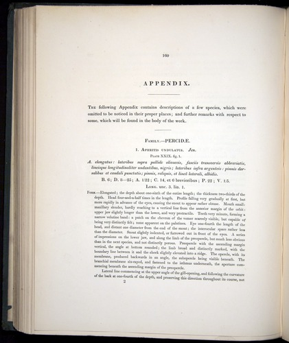 Image of Darwin-F8.3-1838-00160