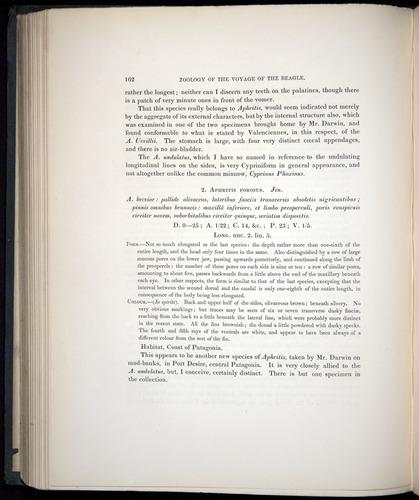 Image of Darwin-F8.3-1838-00162