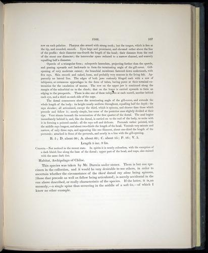 Image of Darwin-F8.3-1838-00167