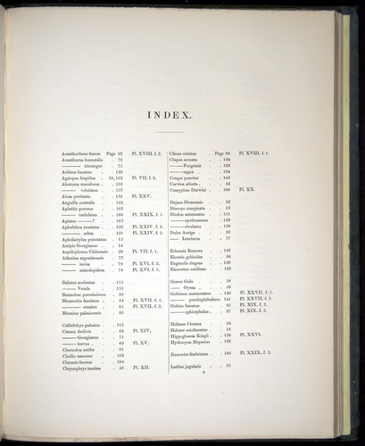 Image of Darwin-F8.3-1838-00171