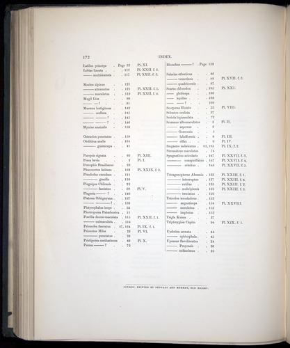 Image of Darwin-F8.3-1838-00172